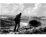 palestina-bilin