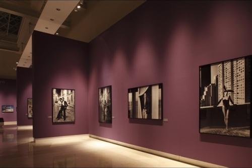 Allestimento mostra Helmut Newton - Roma