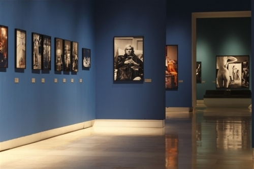 Frammento percorso mostra Helmut Newton - Roma