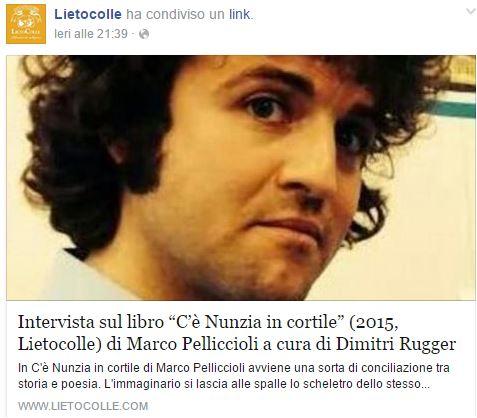 Intervista al poeta MarcoPelliccioli